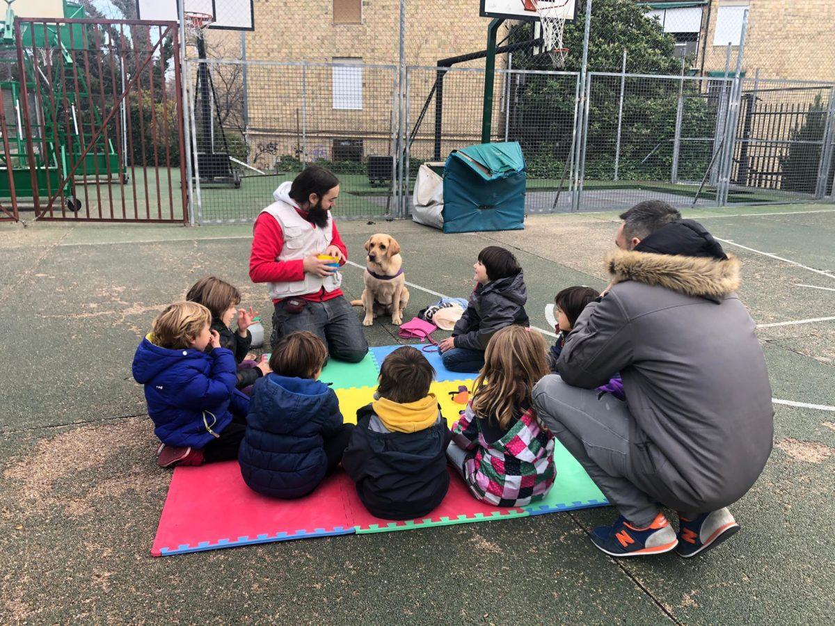 Taller educativo perros asistencia